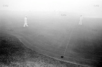 Croquet in the Fog